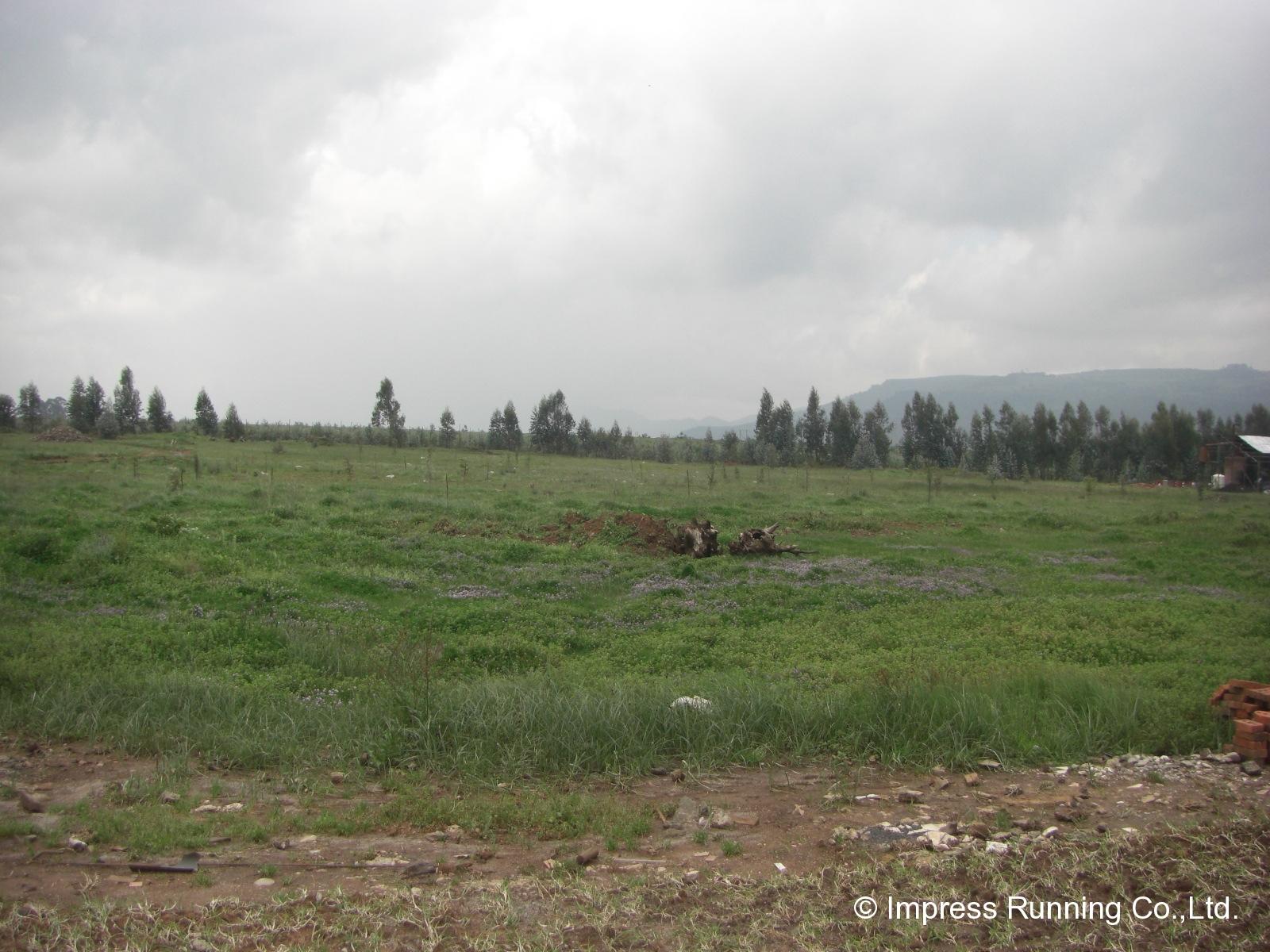 Ethiopia_CIMG3036