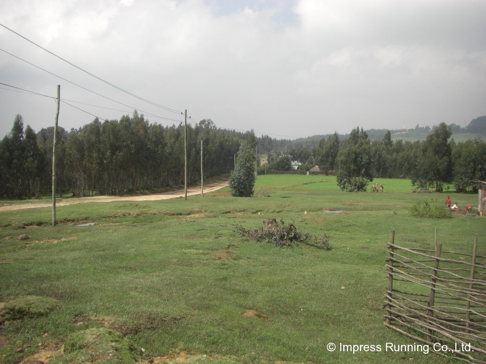 Ethiopia_CIMG3072