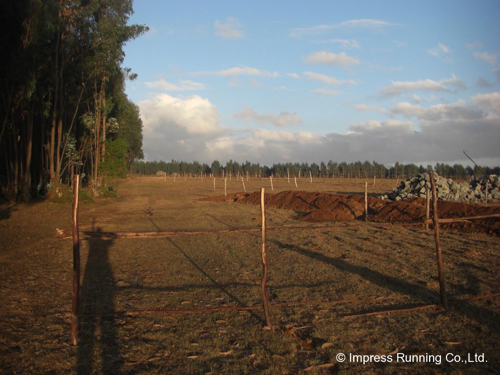 Ethiopia_CIMG3408