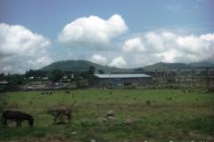 Ethiopia_CIMG2937