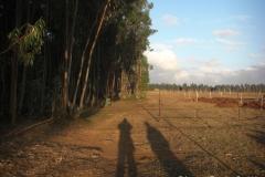 Ethiopia_CIMG3411