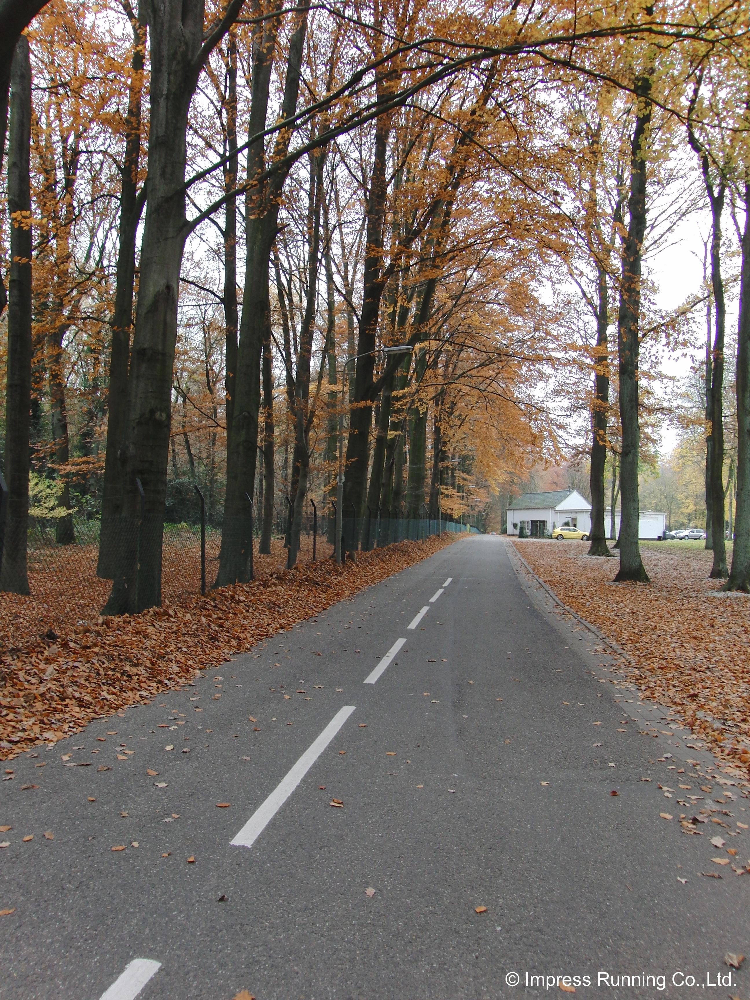 Nijmegen_CIMG3009