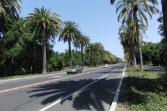 Stanford_CIMG1754