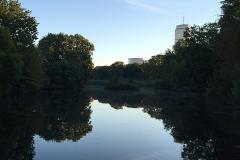 boston_41